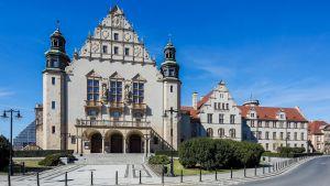 Radboud University - STAFF TRAINING WEEK (17-21 May)  ONLINE